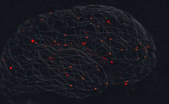 Normal_brain__background