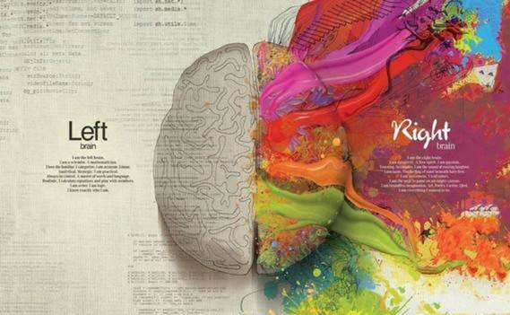 Normal_normal_mozg-kraski-um-kreativ__1_